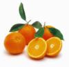 Πορτοκάλια Ναβαλίνες, Βαλέντσια, Torocco, Μέρλιν